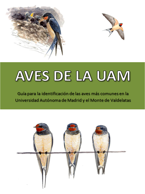 Portada Guia UAM 2015
