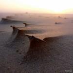 Paisajes - Viento y arena...la playa viva