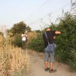 Sacando aves de las redes