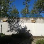 Nidos 9 a 15 en la C/Hobbes (invernaderos)